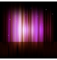 Northern lights Aurora polaris vector image vector image