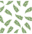 palm leaves isolated white background vector image