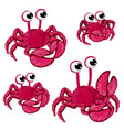 set red cartoon crabs isolated on white vector image vector image