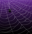 Spider Webs on Purple Background vector image