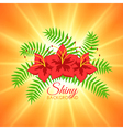 Summer Background with Beautiful Flowers and vector image