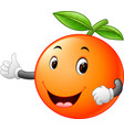 cute orange with face vector image