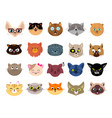cats avatars flat cat faces isolated kitten vector image