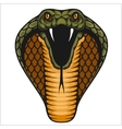 Cobra head - color vector image