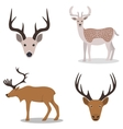 Deer and their head vector image vector image