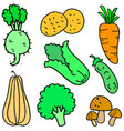 doodle of vegetable various collection vector image vector image