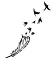 feather and birds black and white vector image