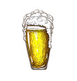 hand drawn tall beer glass full wheat vector image vector image