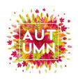 hello autumn different colored autumn leaves vector image vector image