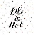 Life is now Lettering vector image vector image