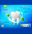 mint toothpaste teeth whitening gum care clean vector image