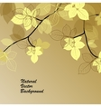 Natural background with yellow leaves vector image vector image
