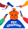 pet grooming concept happy lap-dog and hands with vector image