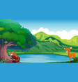 scene with deer and red panda by the pond vector image