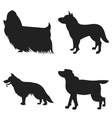 Set of dogs silhouette vector image vector image