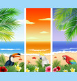 set of three tropical beach background vector image vector image