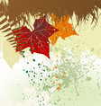 Autumn background with a space for a text vector image vector image