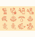 local coffee farmer line icon with coffee tree vector image