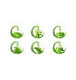 set drop green juice water and leaf food healthy vector image