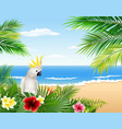 tropical beach cards plants and parrots vector image vector image