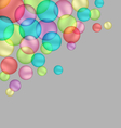bubbles isolated on grey vector image vector image