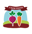 farm fresh vegetables liifestyle healthy sticker vector image vector image