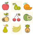 fuits and berries set of vector image