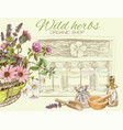Natural cosmetics banner vector image vector image