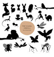 silhouettes of cute animals isolated on white vector image vector image