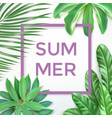 summer typography with exotic leaves and frame vector image vector image