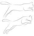 two cats in sketch style set of black line cats vector image vector image
