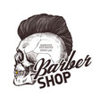 engraving vintage barber shop label vector image