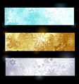 Grunge banner with snowflakes vector image vector image