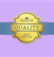 premium quality and best choice golden logotype vector image
