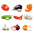 Raw Vegetables Isolated Icons vector image vector image