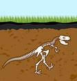 Skeleton of Tyrannosaurus Rex Dinosaur bones in vector image vector image
