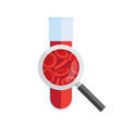 test tube with blood and magnifying glass vector image