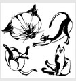 cats - isolated on white background vector image