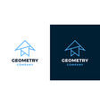 geometric logotype template positive and negative vector image vector image