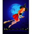 halloween witch holiday night moon vector image