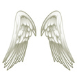Pair of angel wings vector image vector image