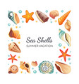 sea shells square frame seashells border template vector image vector image