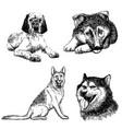 set of dog doodle hand drawn vector image
