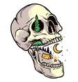 skull camping design vector image