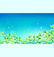 summer nature background blossoming flowers field vector image