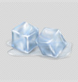 two melting ice cubes on transparent background vector image