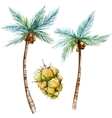 Watercolor palms vector image vector image