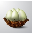 white nest isolated vector image vector image