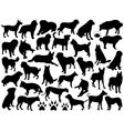dogs silhouette collage vector image