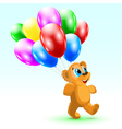 bear Birthday vector image